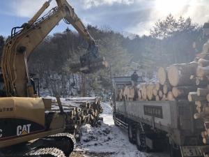 2018 冬季森林伐採見学etc_180205_0039