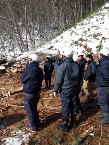 2018 冬季森林伐採見学etc_180205_0009