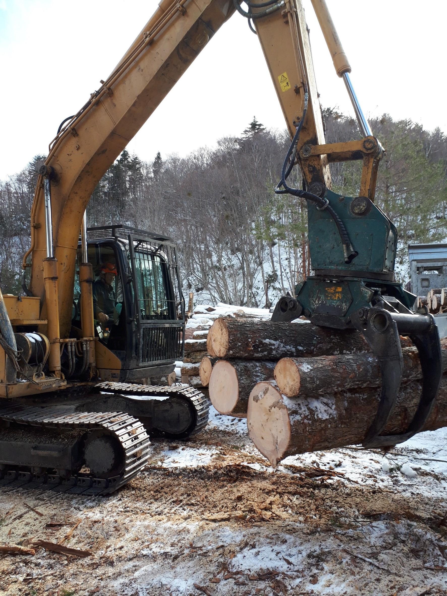 生産課スキルアップ ~伐採見学と製材工場 見学~
